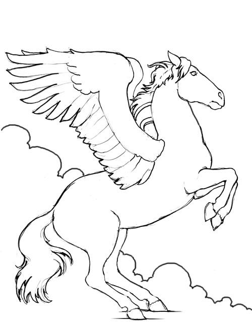 Konj 17