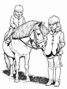 Konj 20