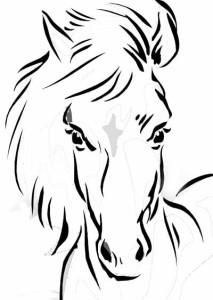 Konj 7