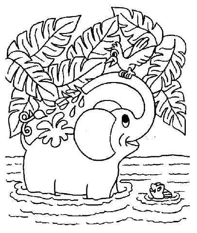 Nagajivi slonček