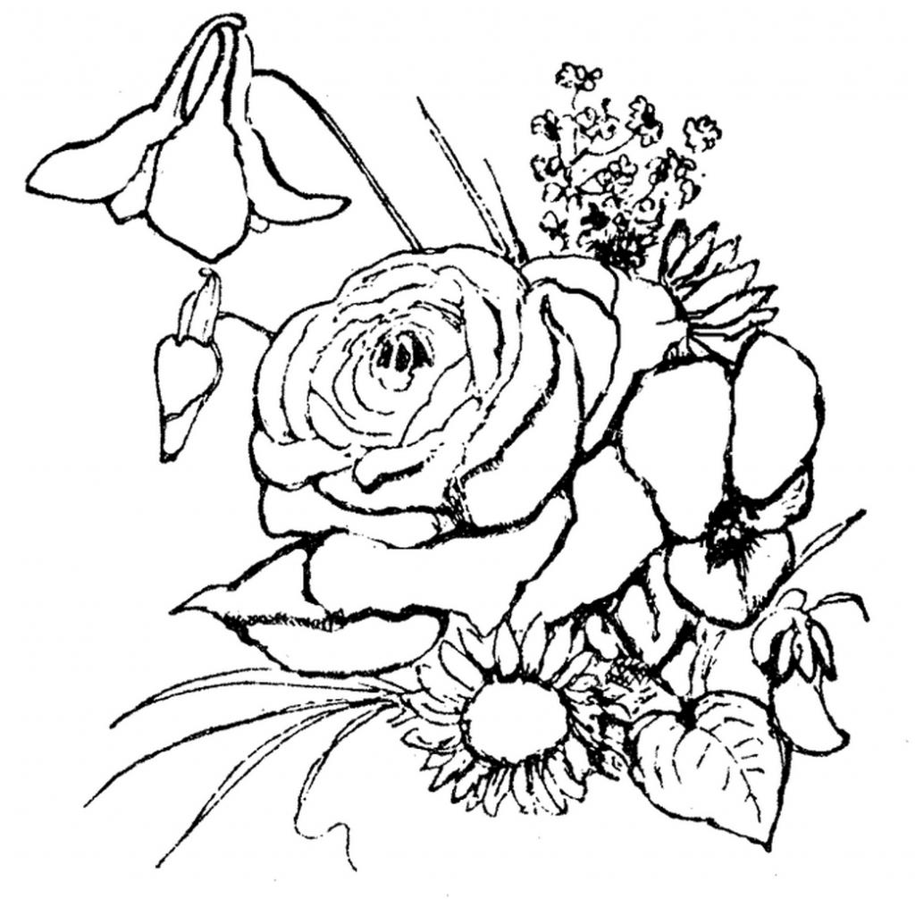 Rože 15