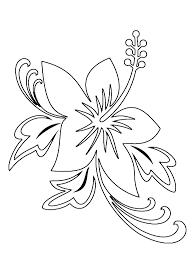 Rože 16