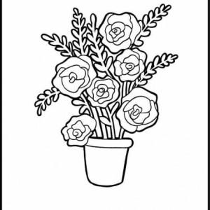 Rože 19