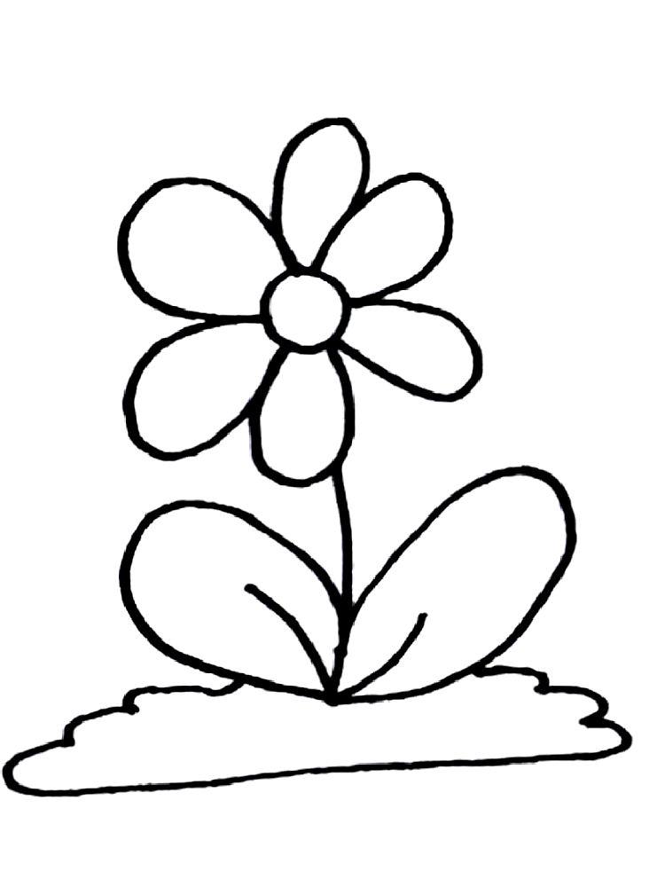 Rože 2