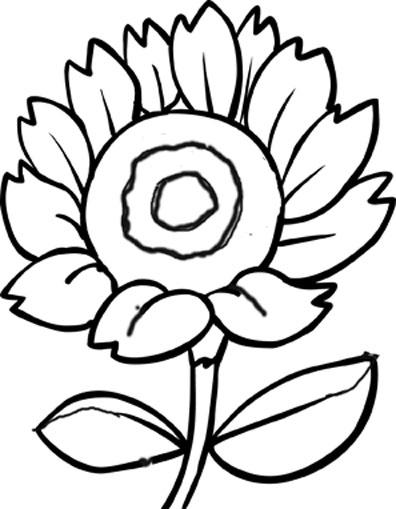 Rože 3